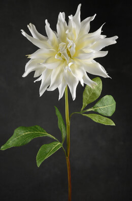 Large Silk Cream White Dahlia Flowers