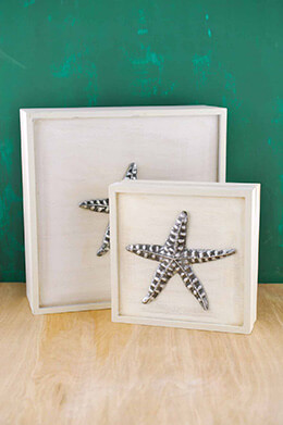 Daphney Coastal Boxes (Set of 2)