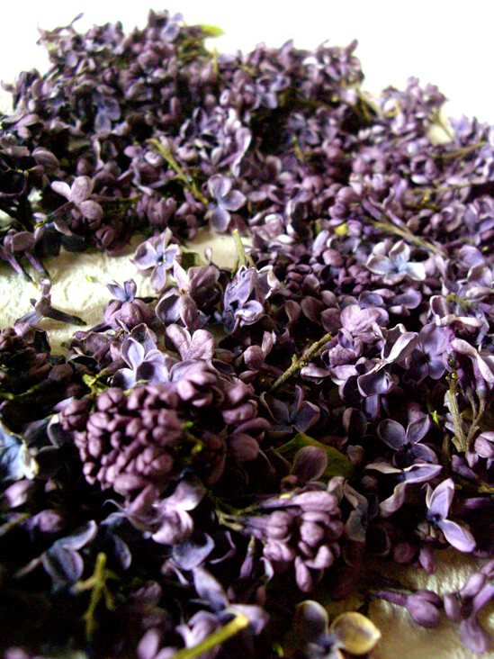 Freeze Dried Natural Lilac Blossoms 5 Cups