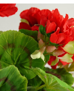 Artificial Geranium Red