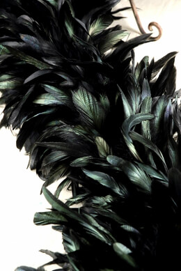 "Designer Boas: Black Iridescent Coque Feather Boas (10"" width)"