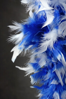 Discount Boas Royal Blue w/ White Tips Chandelle Feather Boas 80 gram