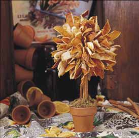 DIY: Fall Craft Projects - Decorations & Gifts