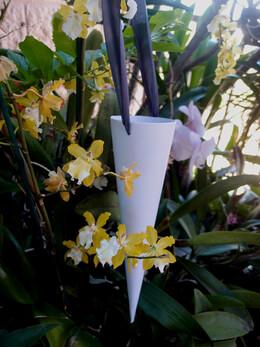 DIY Make Petal Cones