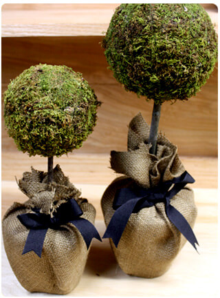 DIY Moss Topiary from Haute Apple Pie Blog
