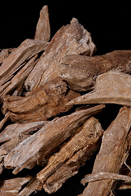 Driftwood Vase & Terrarium Filler