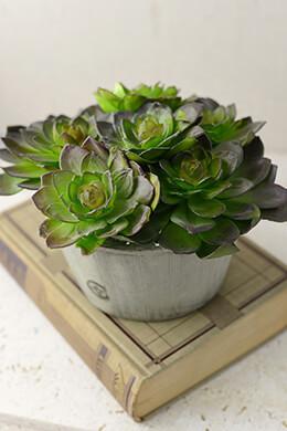 Faux Succulent Bowl 6x9
