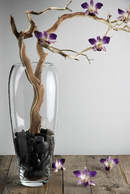 Elliptical Glass Vase