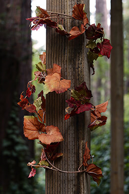 Fall Grape Leaf Garland 6ft