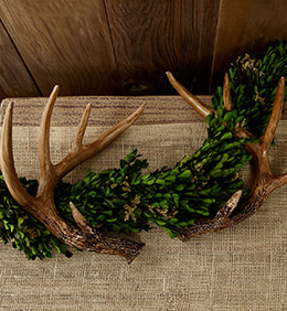 Faux Antlers 11in (Set of 2)
