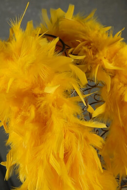 Feather Boas Chandelle Maze Gold Feathers 80 gram