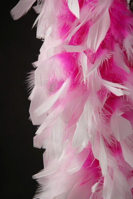 "Feather Boas Pink with White Tips (8"" width) Chandelle Feather Boas"