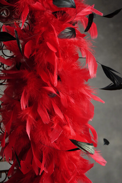 Feather Boas Thick Coque & Chandelle Red with Black Coque Feathers