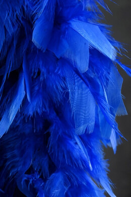 Royal Blue Feather Boa 7in wide
