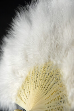 Feather Fan White 20in