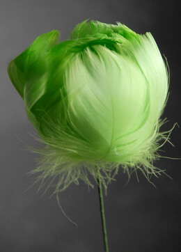 Bright Green Feather Flowers on Wire Stem 18""