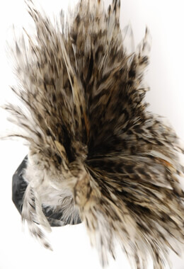 Feather Trim Chinchilla 36in