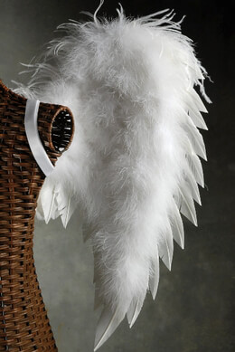 Feather Wings 33x22 White Goose and Deluxe Marabou Ostrich