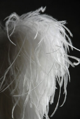 Angel Wings White Feathers 20in