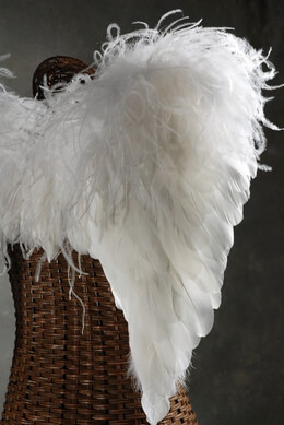 Angel Wings White Ostrich Feathers
