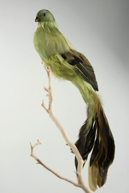 "Feathered Birds 14"" Green & Brown Bird"