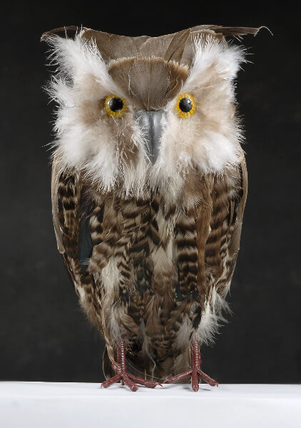 "Feathered Owls 14"" Brown Barn Owls"