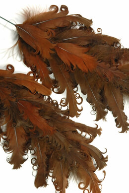 Brown Feathers Curly 9.5in (Pack of 12)