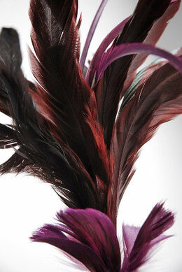 Burgundy Feathers Wired