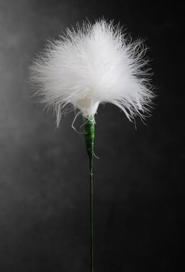 "White Marabou Feather Flower 20"" Wired stem"