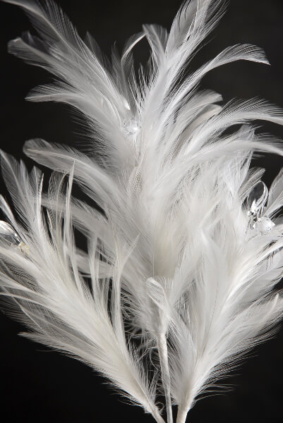 "White Feathers with Crystals 21"" Wired Stem"