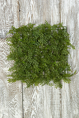 Fern Mat 10in