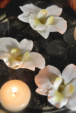 6 Floating Orchids Cream Natural Touch