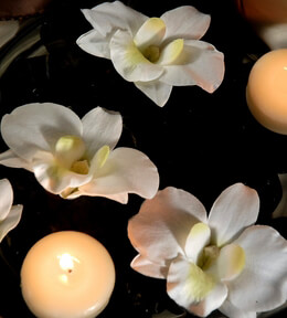 "Floating Orchids Cream White 2-3"" Natural Touch Orchids - 6 Flowers"