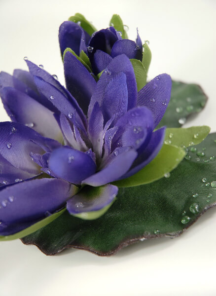 12 purple water lily floating flowers