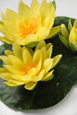 "Floating Flowers Yellow Water Lilies (9"")"