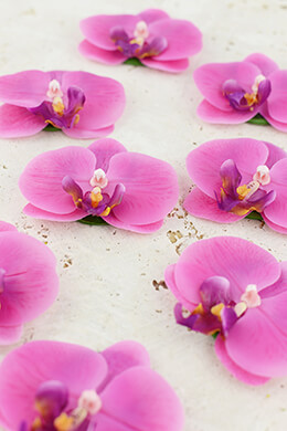 Floating Orchids Fuchsia 3in (Set of 8)