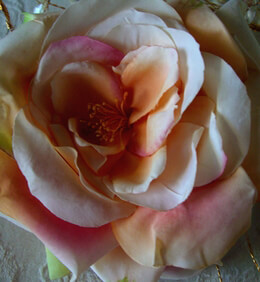 "Floating Peach Tea Roses (4-3/4"" flower head)"