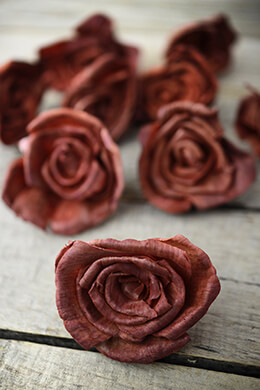 Sola Flowers Brown Roses (15 flowers)