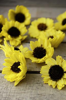 12 Sola & Thistle Flowers Black Eyed Susans