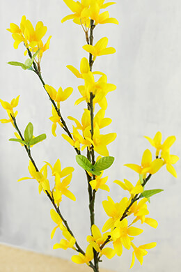 Forsythia Flower Branch 34in
