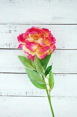 "Fuchsia & Cream Silk Peony (5"" flower)"