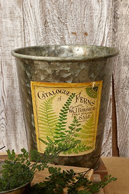 Galvanized Bucket Fern 7.5X8.5in