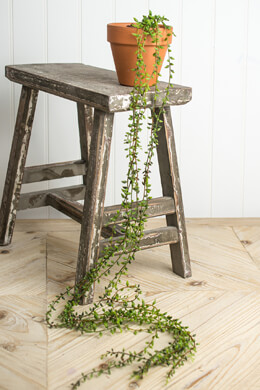 String-of-Beads Succulent Hanging Vine Garland 41""