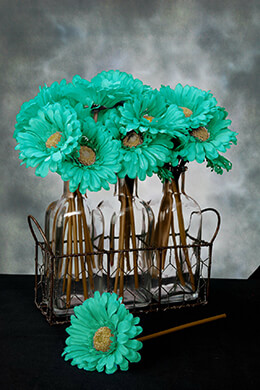 Gerbera Daisy Stem Turquoise 9in (Pack of 24)