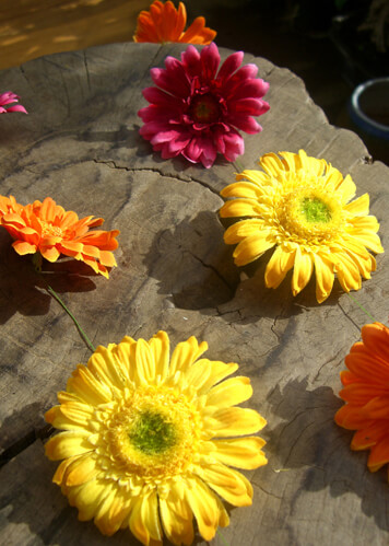Gerbera Daisy Garlands  5ft