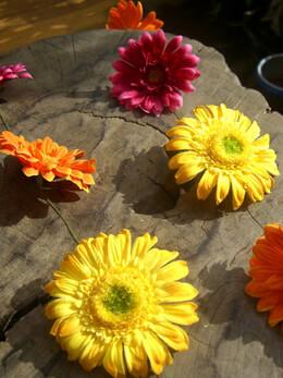 Gerbera Daisy Garland Multicolored 5ft