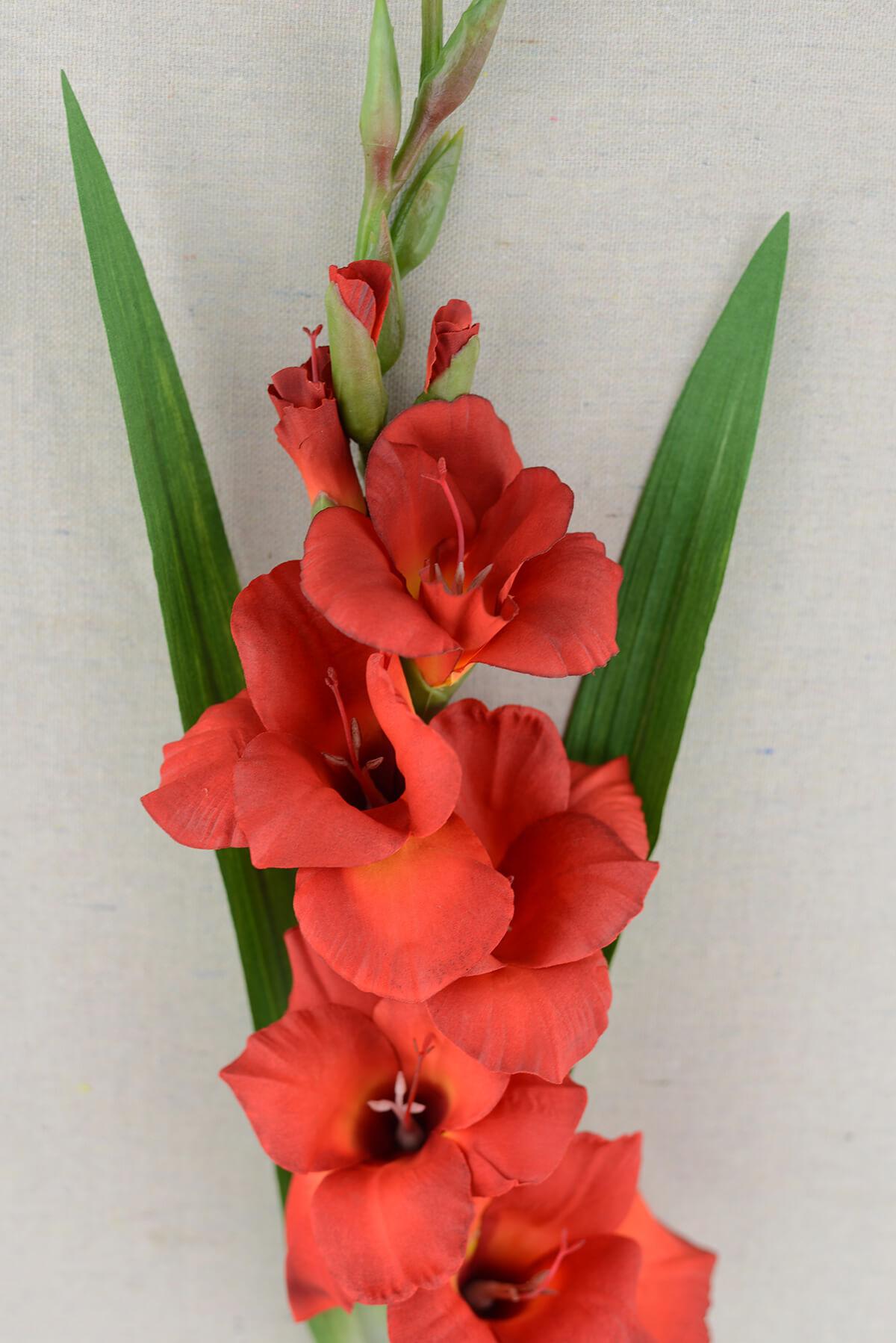 Gladiolus Flower Red 33in