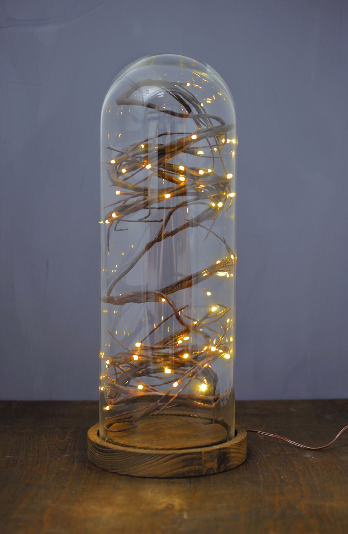 """16"""" Glass Cloche with Wood Base"""