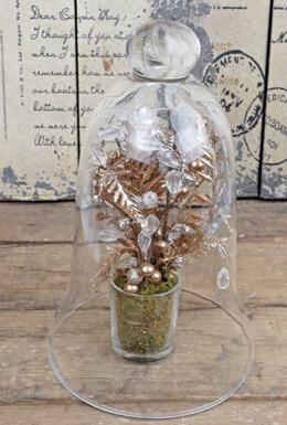 Glass Bell Jar 9.5in