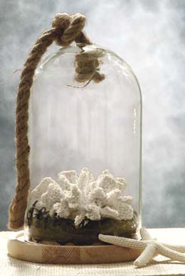 Nautical Glass Bell Jar with Wood Base & Rope 9.25 in